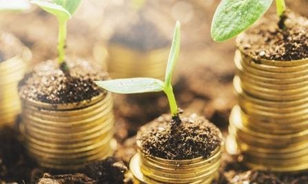 Kleine Pflanzen wachsen auf der Factoring Bank